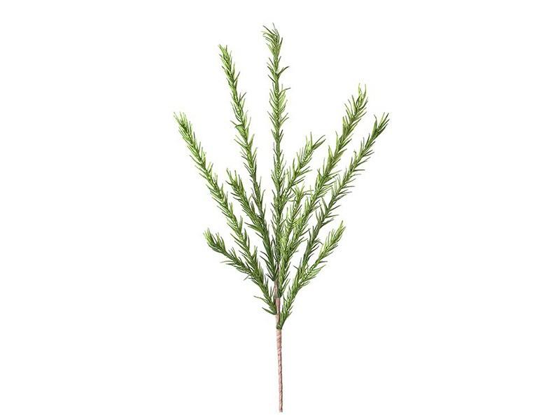 Torre & Tagus Desert Pine Stem - Green - Perfect vase filler