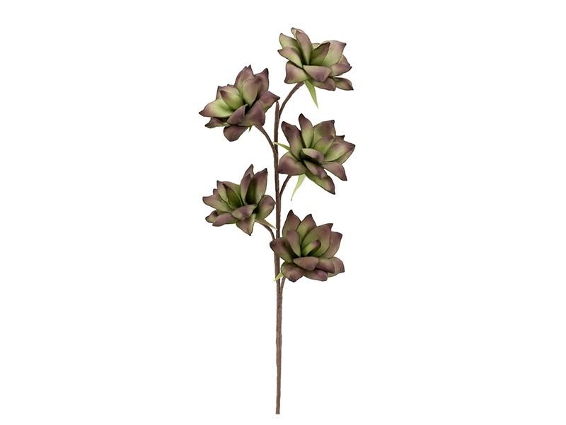Torre & Tagus Desert Succulent 5 Bloom 94cm Stem - Perfect vase filler