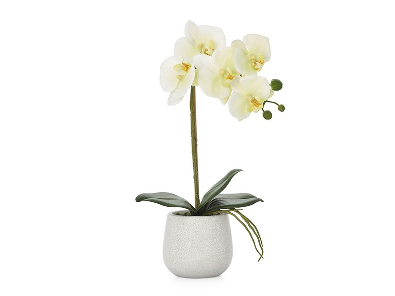 Torre & Tagus Phalaenopsis Potted 38cm Faux Single Stem Orchid - Perfect vase filler