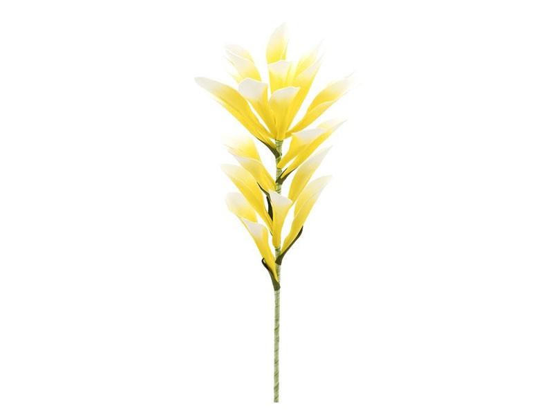 Torre & Tagus Desert Lily Stem - Gorgeous vase filler