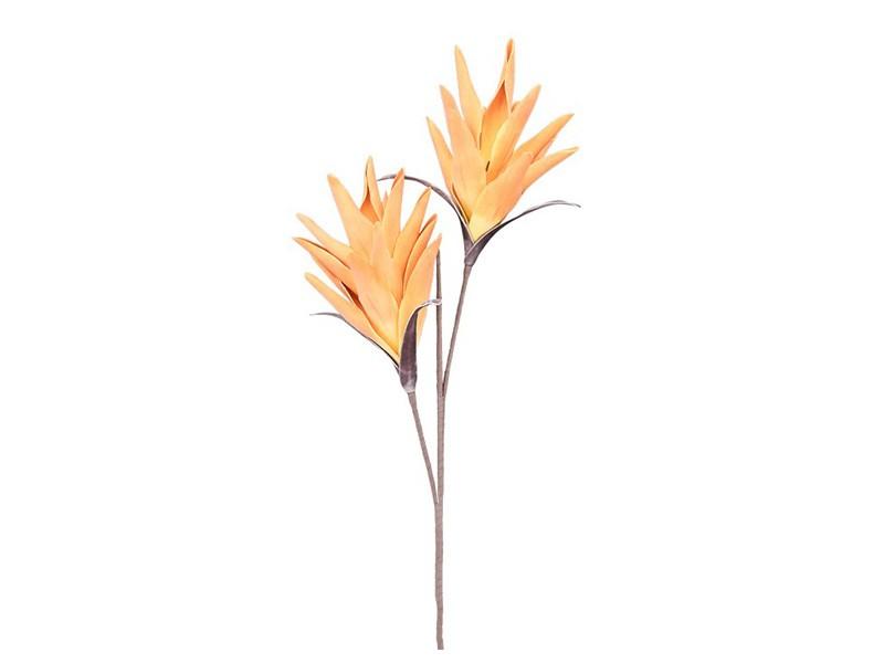 Torre & Tagus Desert Tropic Paradise 112cm Stem - Orange - Perfect vase filler